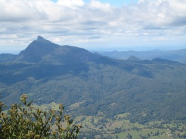 Wollumbin viewed from the Border Ranges and looking to the Pacific Ocean.