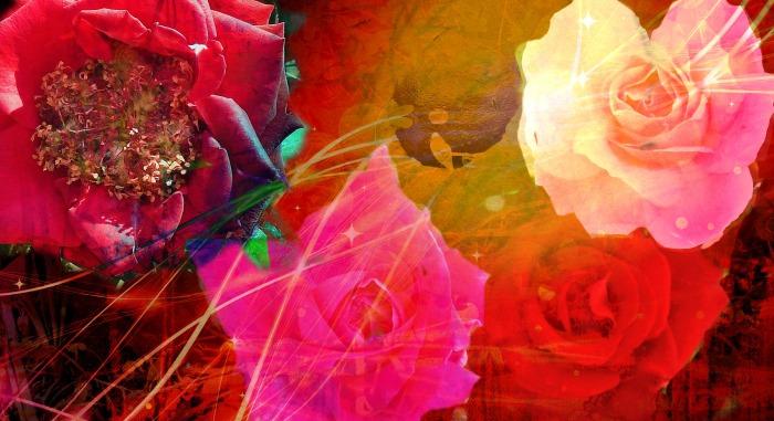 Love & Pomegranates