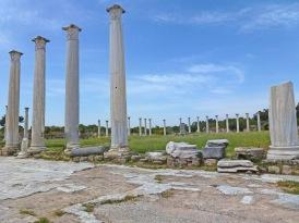 Salmis - Columns in Gymnasium