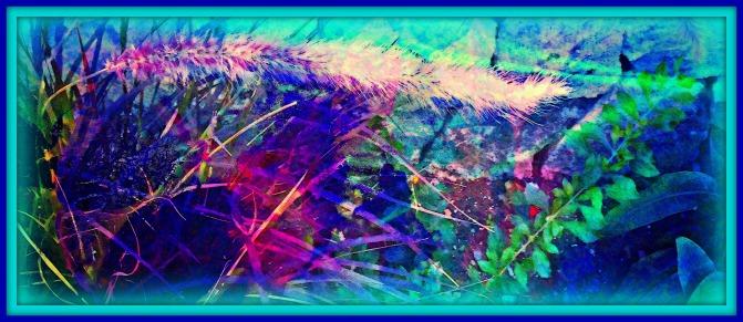 Sky, Flower, Grass