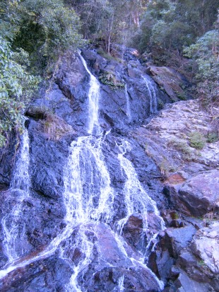 Waterfall, Dorrigo National Park