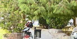 Kyrenia Walkway
