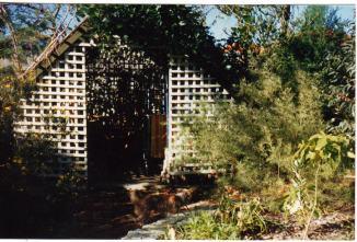 Image1-17