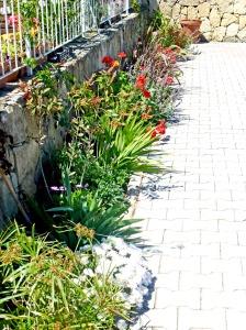 Garden 2 2014