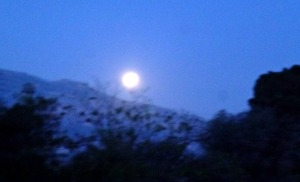 Full Moon 1, May 2014