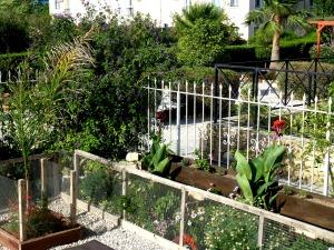 Corner garden, July 2014