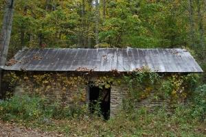 Ann's House