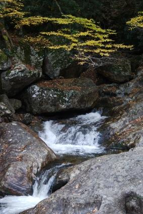 Ann's Waterfall