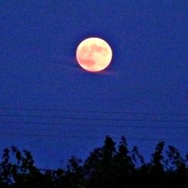 Full Moon Eclipse 1 Oct 2014