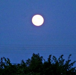 Full Moon Eclipse 2 Oct 2014