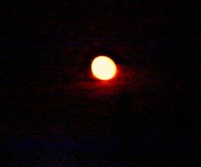 Orange Moon, 11th Sept 2014