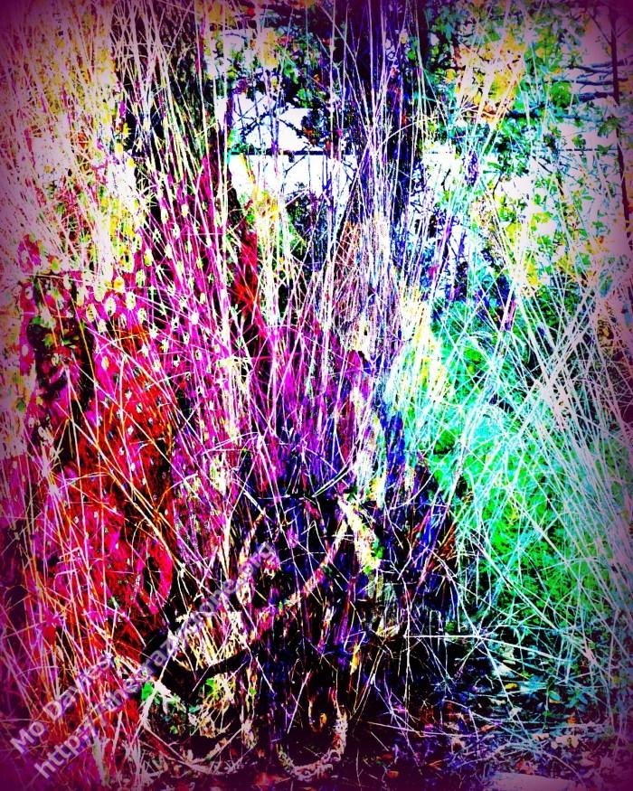 Meadow Worlds