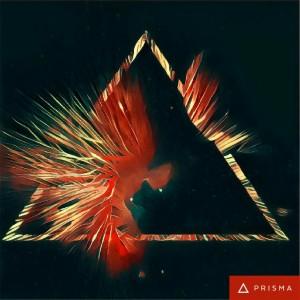phoenix-rising-2